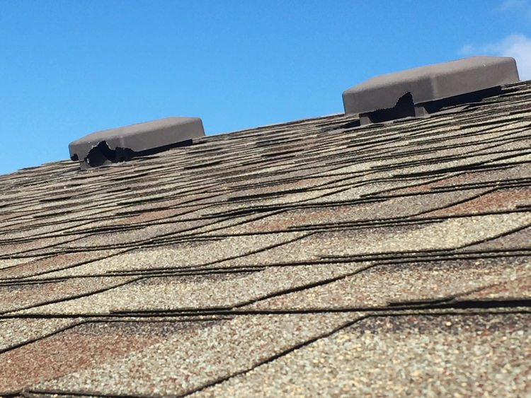 Roof vent damage from wildlife
